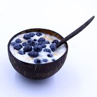 Oh Lou Lou! Coco Bowl Blueberry 2