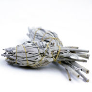 Picture of White Sage smudge torch